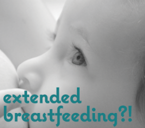"Considering ""Extended"" Breastfeeding? Who, Me?"